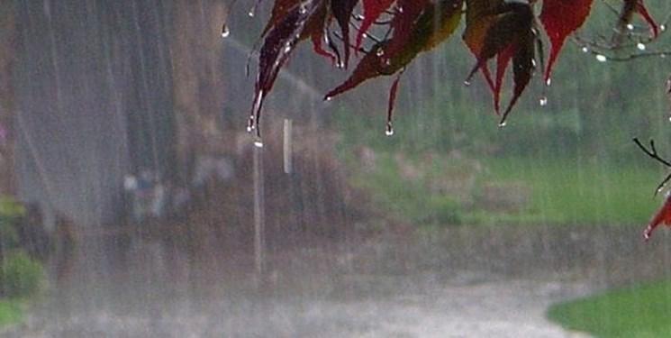 برای نخستین بار؛ بارندگی و افزایش انتشار دی اکسید کربن
