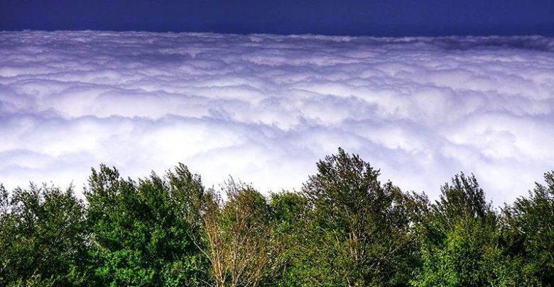 ممنوعیت ورود گردشگر به جنگل ابر، از پذیرش میهمانان در روستای ابر معذوریم